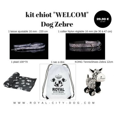 "Kit Chiot WELCOM ""Dog Zebre"""
